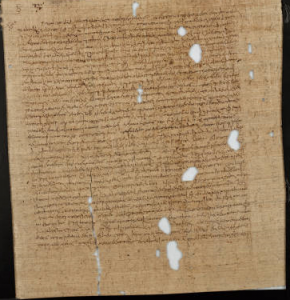 "Didymus the Blind, Manuscript (""On Psalms"")"